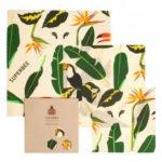 Beeginner Set Design Amazon