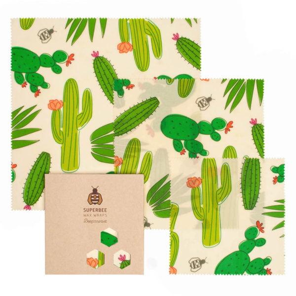 Beeginner Set Design Cactus Big