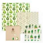 Beeginner Set Design Prickly Pears